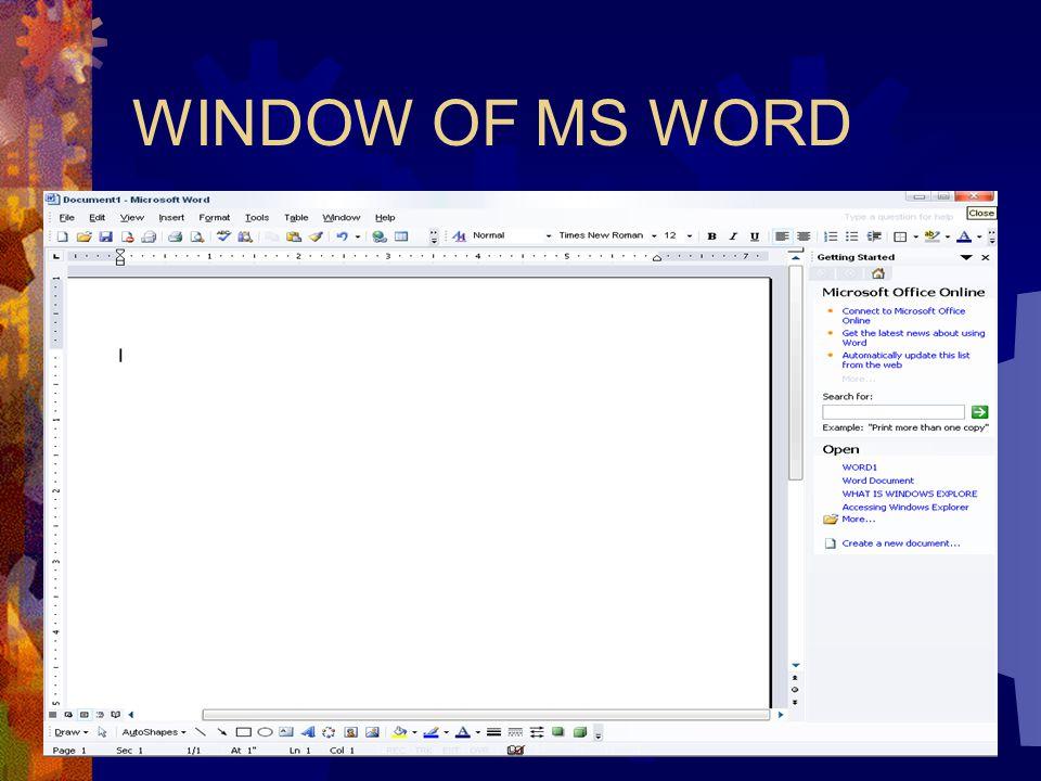 WINDOW OF MS WORD