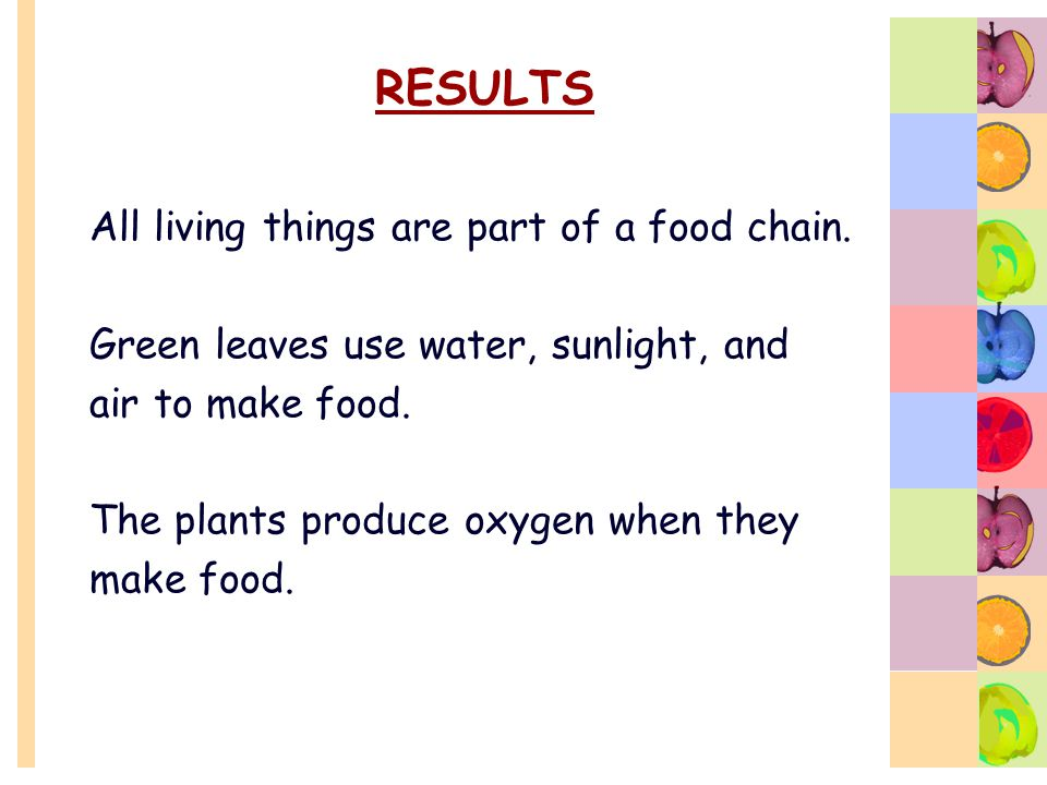 RESULTS All living things are part of a food chain.