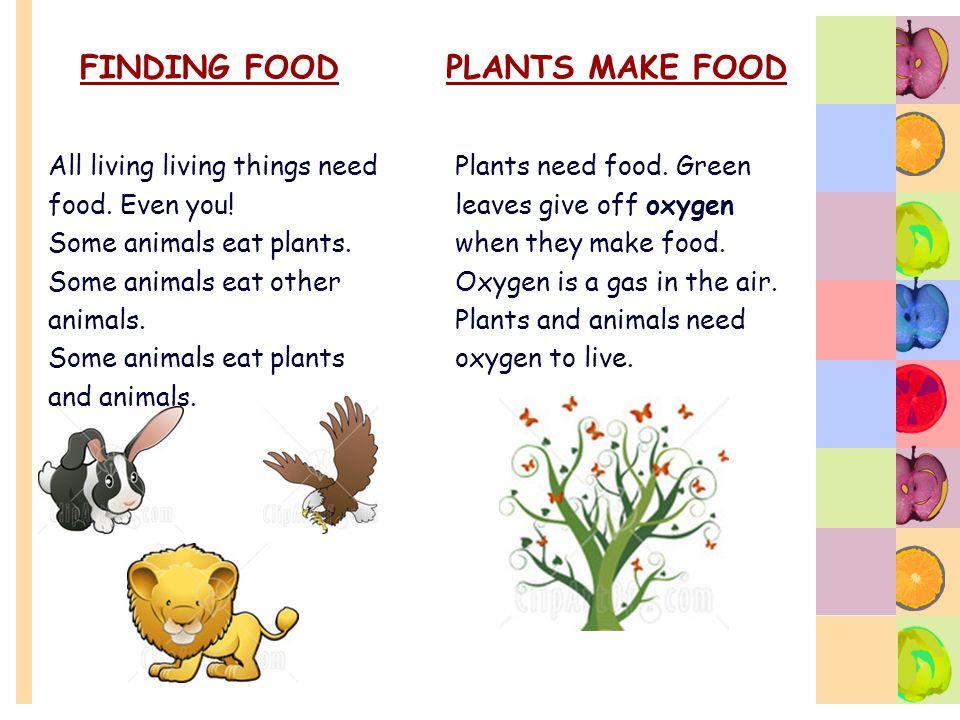 FINDING FOOD PLANTS MAKE FOOD