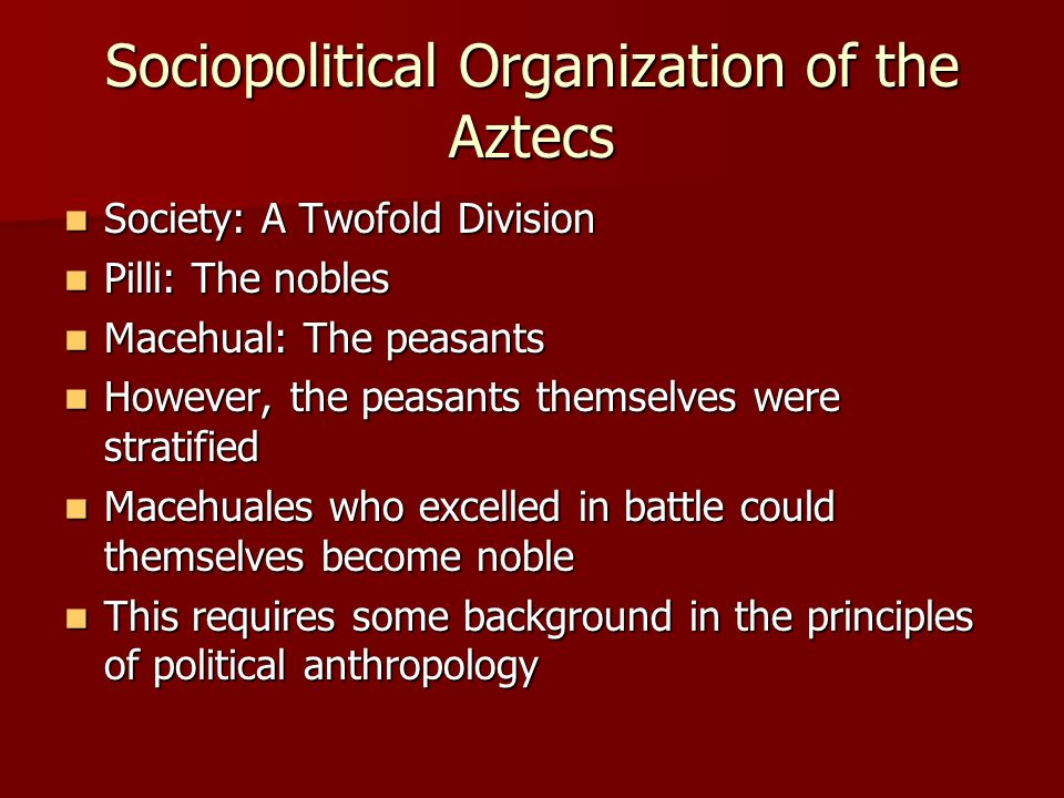 Sociopolitical Organization of the Aztecs