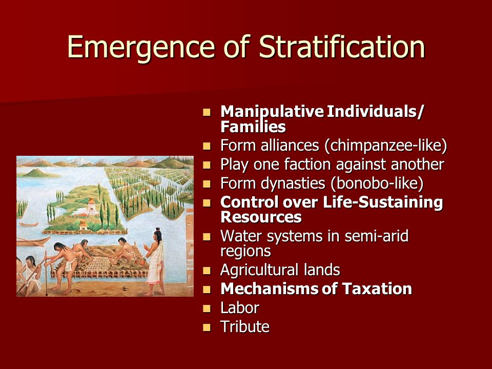 Emergence of Stratification