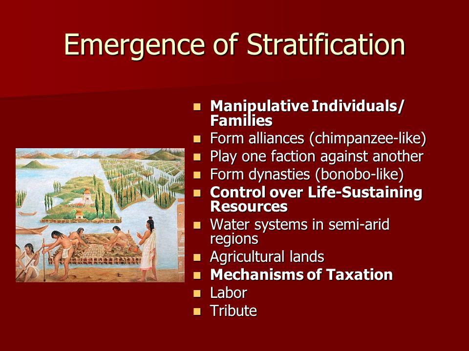 Emergence of Stratification