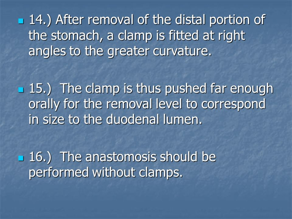 14.) After removal of the distal portion of the stomach, a clamp is fitted at right angles to the greater curvature.