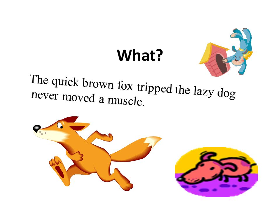 What The quick brown fox tripped the lazy dog never moved a muscle.