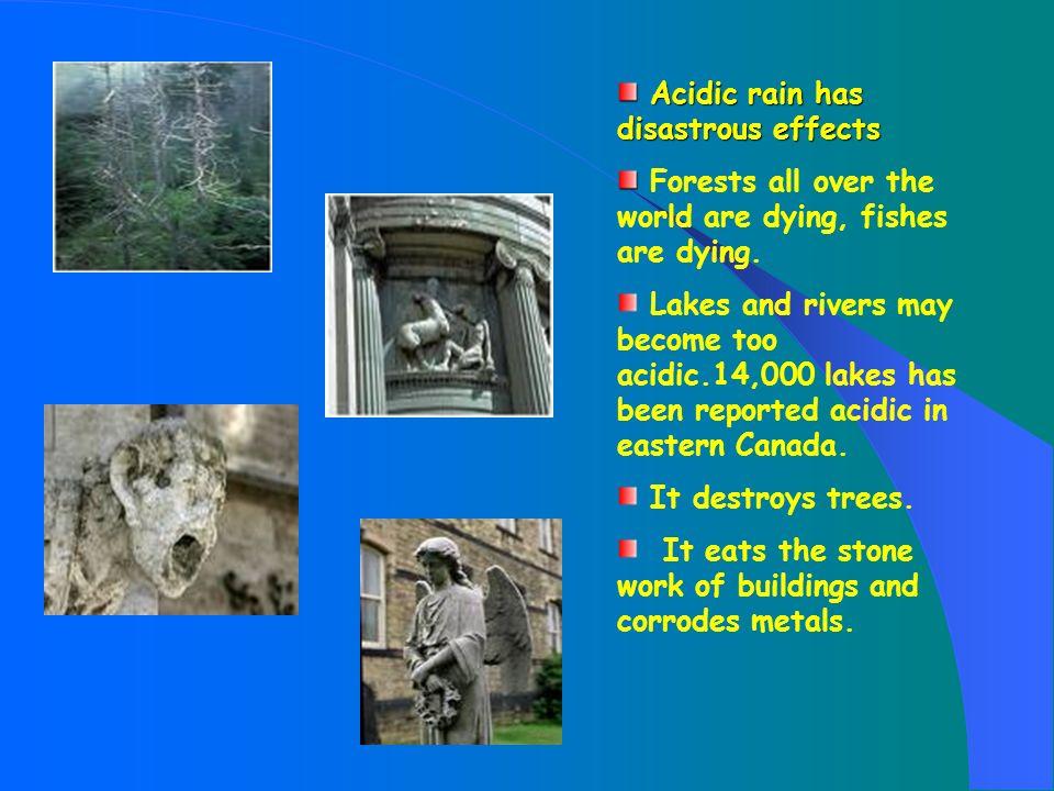 Acidic rain has disastrous effects