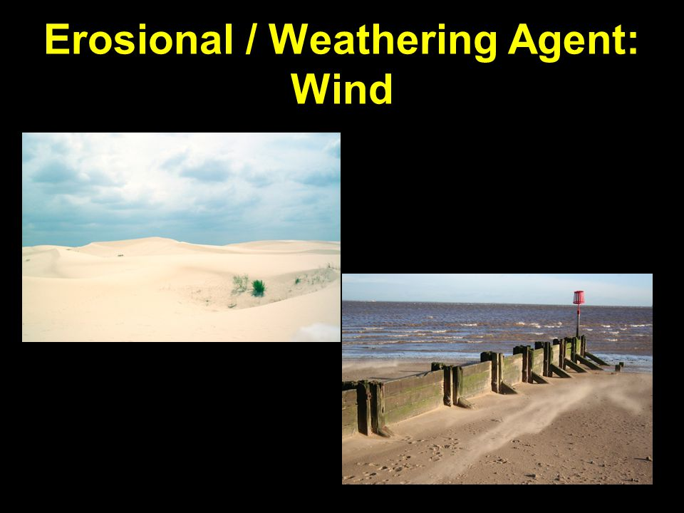 Erosional / Weathering Agent: Wind