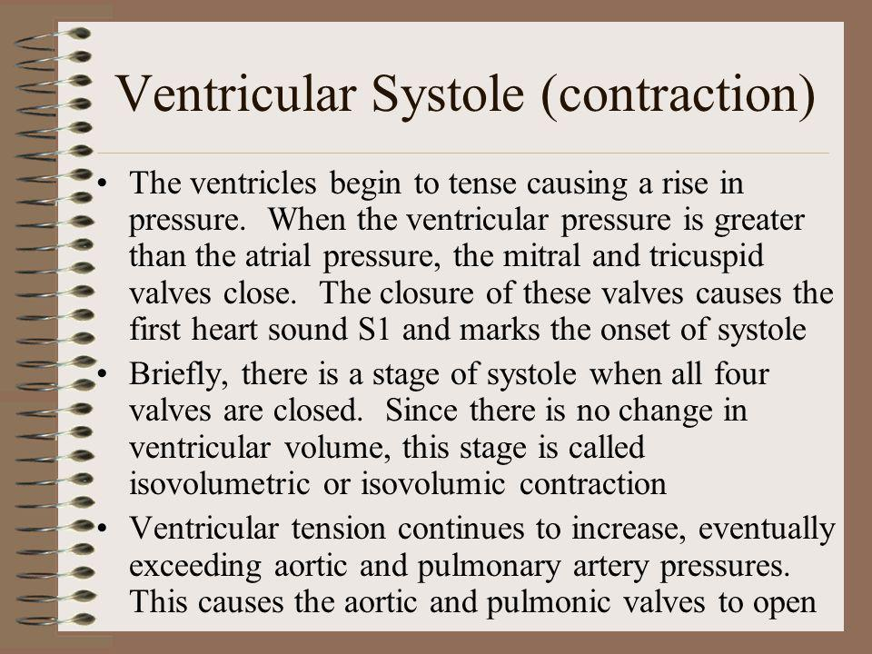Ventricular Systole (contraction)