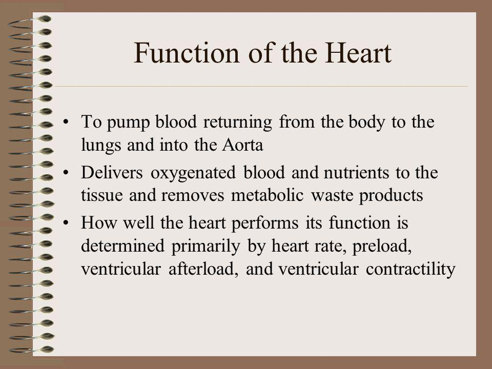 Function of the Heart To pump blood returning from the body to the lungs and into the Aorta.