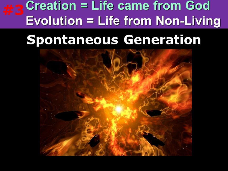 Creation = Life came from God Evolution = Life from Non-Living
