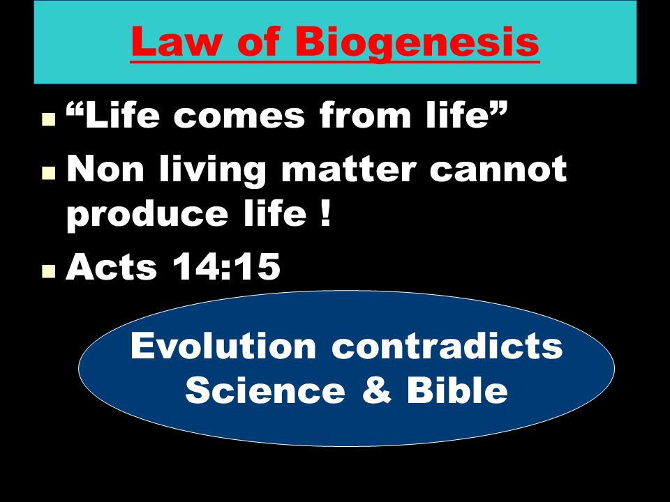 Evolution contradicts