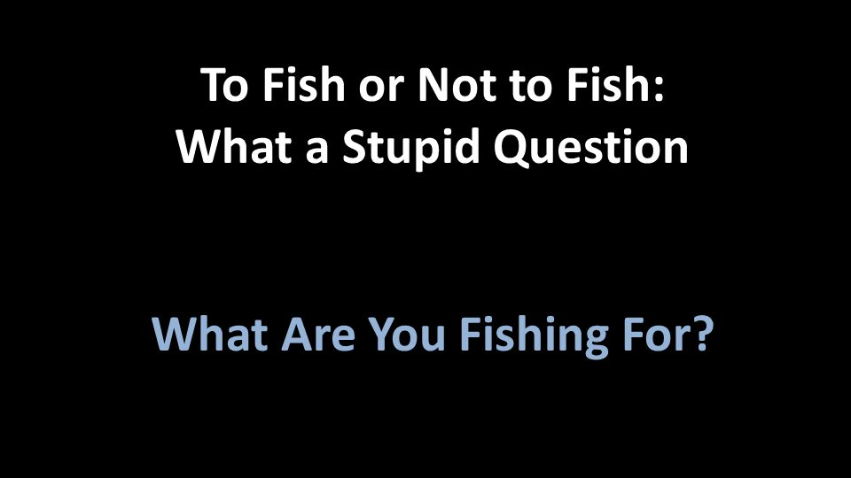 What Are You Fishing For