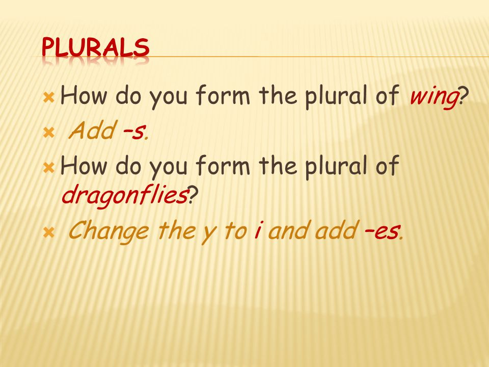 Plurals How do you form the plural of wing. Add –s.