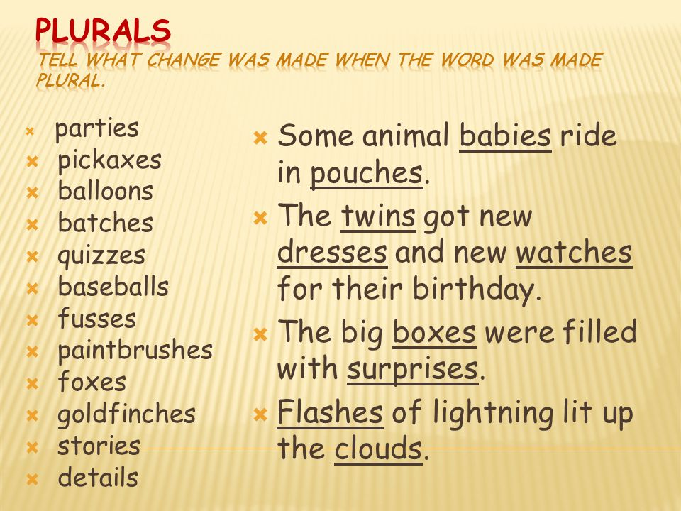 Plurals Tell what change was made when the word was made plural.