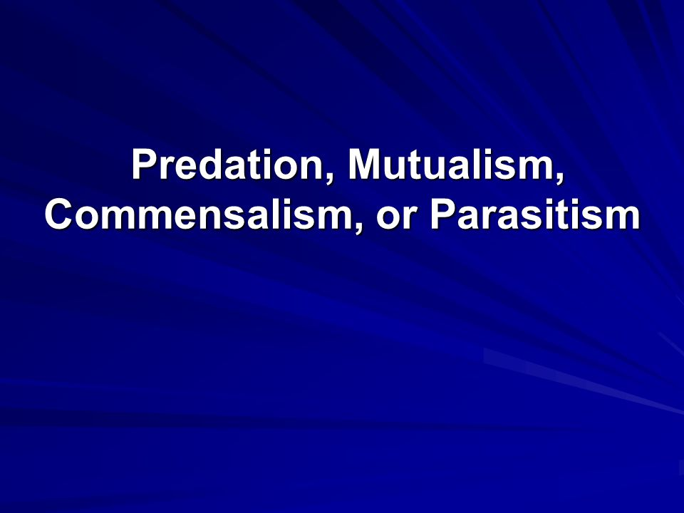 Predation, Mutualism, Commensalism, or Parasitism