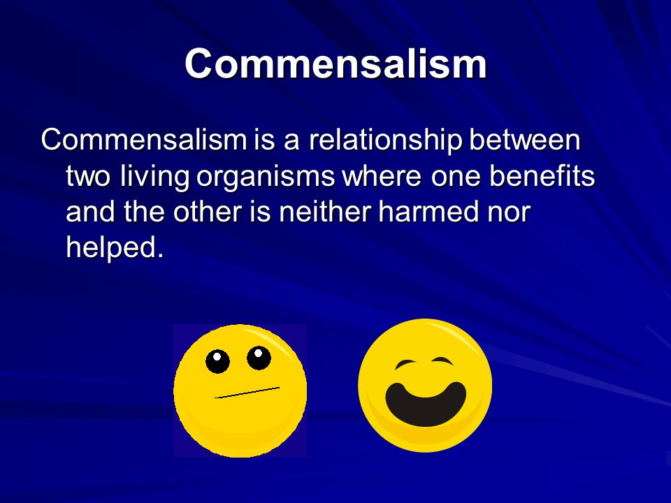 Commensalism Commensalism is a relationship between two living organisms where one benefits and the other is neither harmed nor helped.
