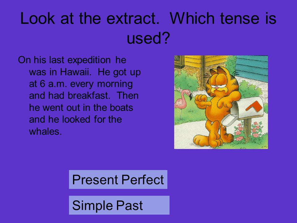 Look at the extract. Which tense is used