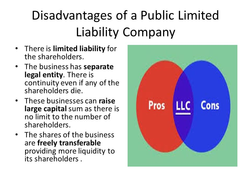 Disadvantages of a Public Limited Liability Company