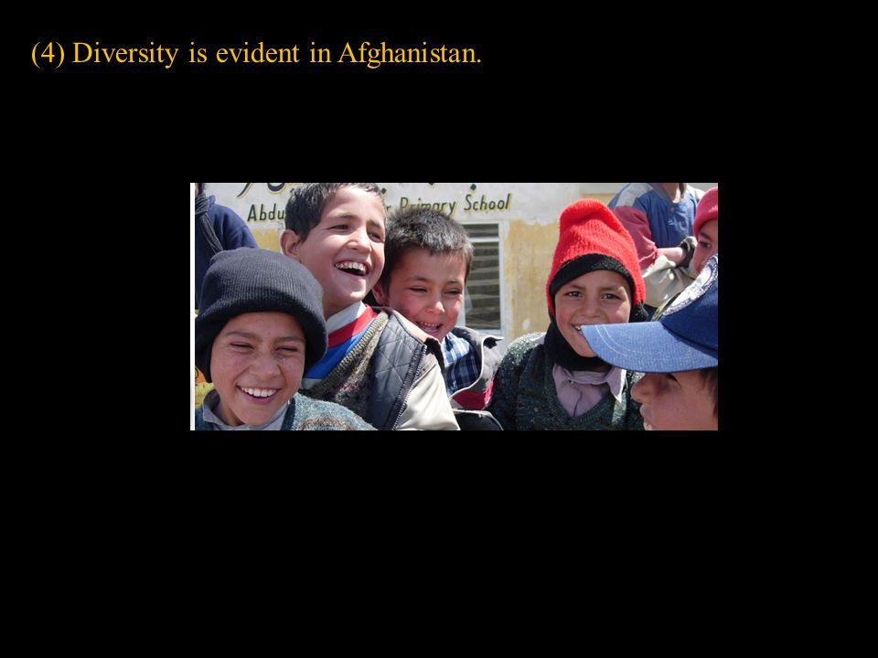 (4) Diversity is evident in Afghanistan.