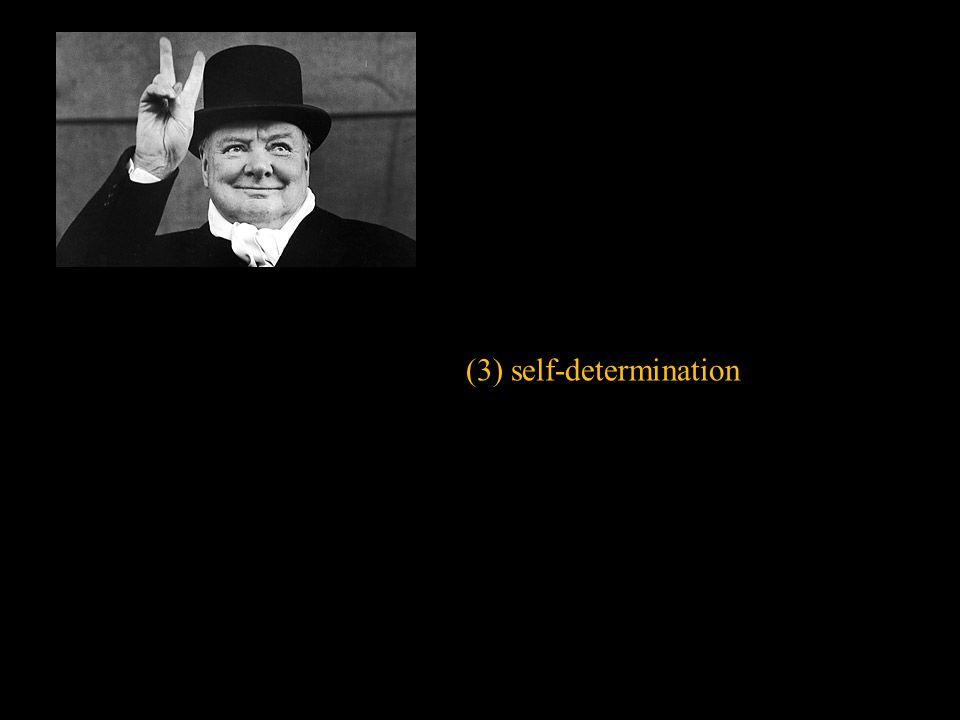 (3) self-determination