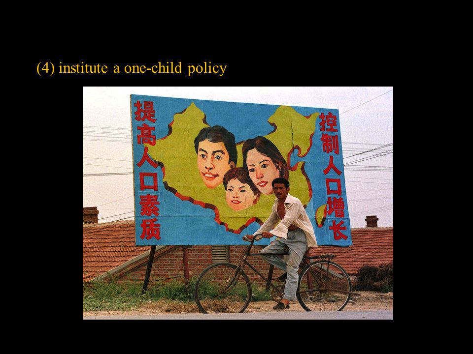 (4) institute a one-child policy