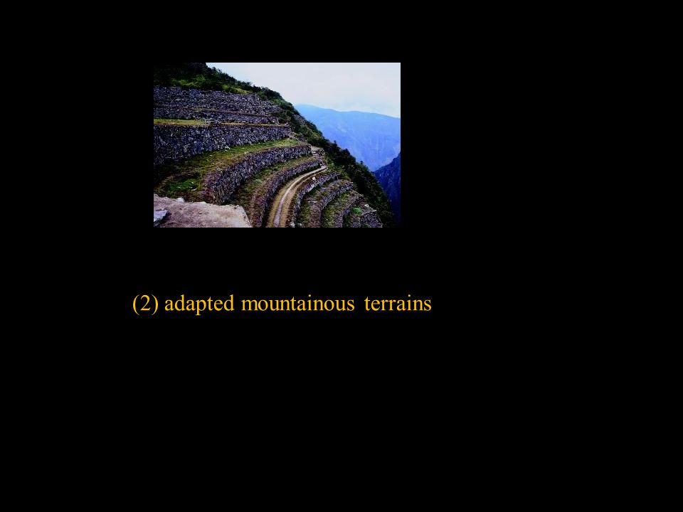 (2) adapted mountainous terrains