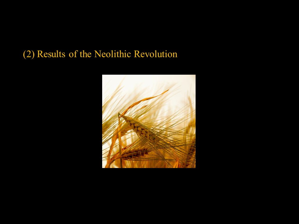 (2) Results of the Neolithic Revolution