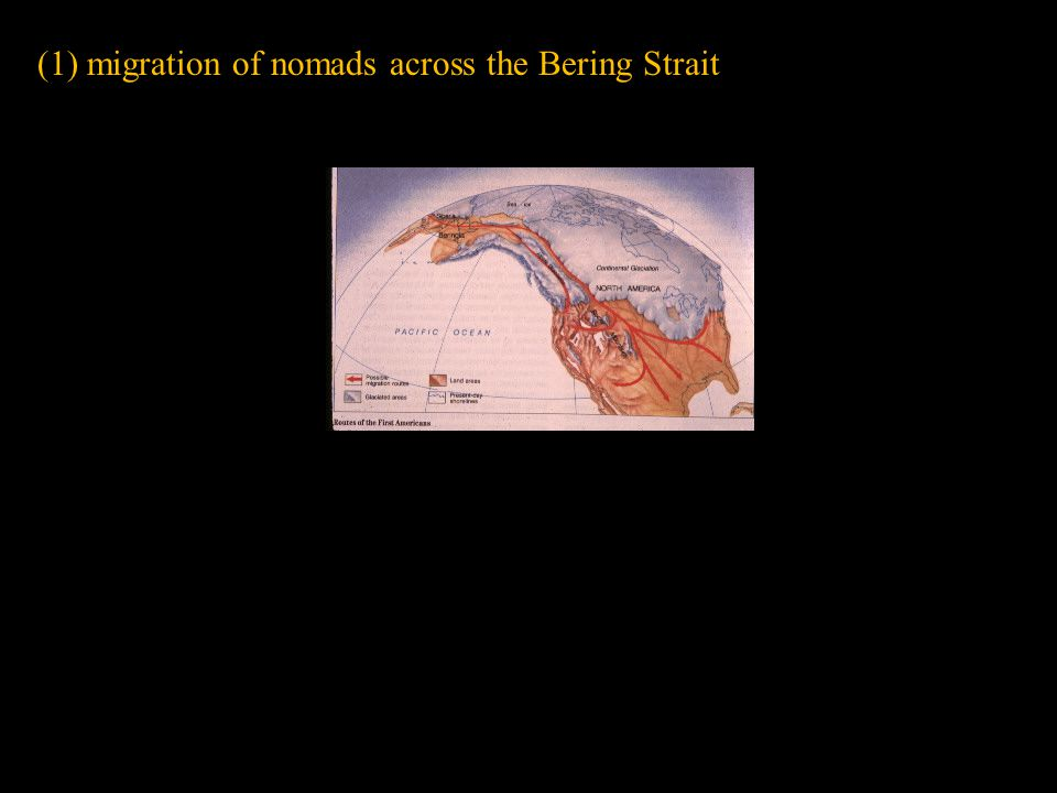 (1) migration of nomads across the Bering Strait