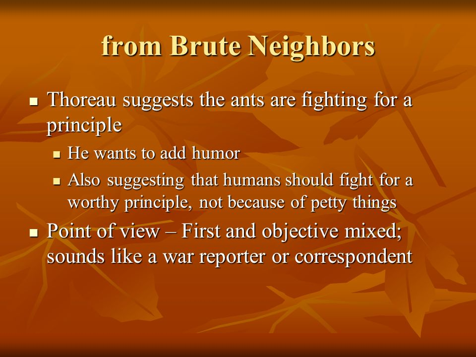from Brute Neighbors Thoreau suggests the ants are fighting for a principle. He wants to add humor.
