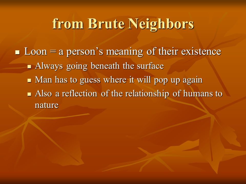 from Brute Neighbors Loon = a person's meaning of their existence