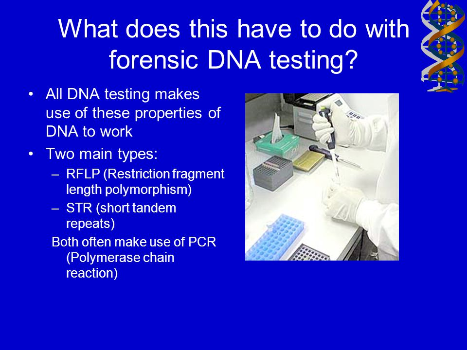 What does this have to do with forensic DNA testing