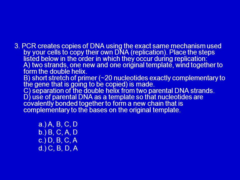 3. PCR creates copies of DNA using the exact same mechanism used by your cells to copy their own DNA (replication). Place the steps listed below in the order in which they occur during replication: A) two strands, one new and one original template, wind together to form the double helix. B) short stretch of primer (~20 nucleotides exactly complementary to the gene that is going to be copied) is made. C) separation of the double helix from two parental DNA strands. D) use of parental DNA as a template so that nucleotides are covalently bonded together to form a new chain that is complementary to the bases on the original template.