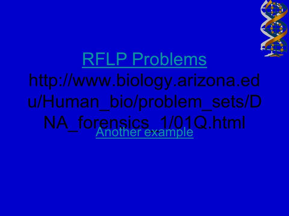 RFLP Problems http://www. biology. arizona