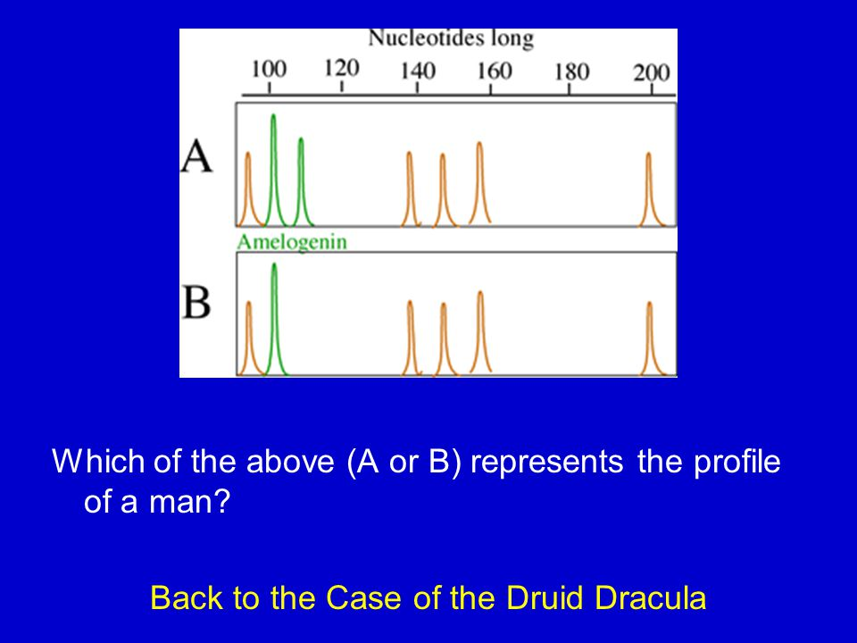 Back to the Case of the Druid Dracula