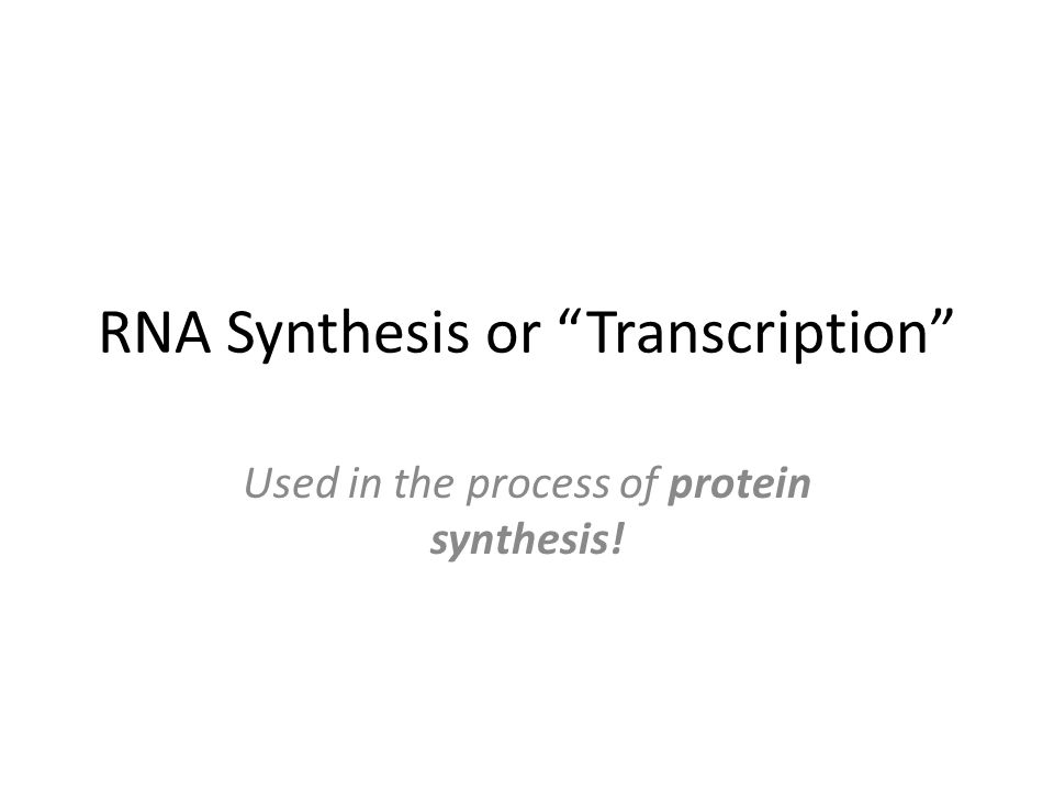 RNA Synthesis or Transcription