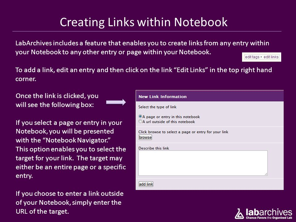 Creating Links within Notebook