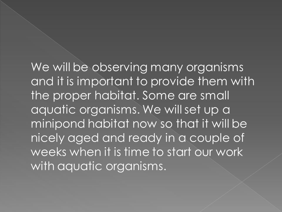 We will be observing many organisms and it is important to provide them with the proper habitat.