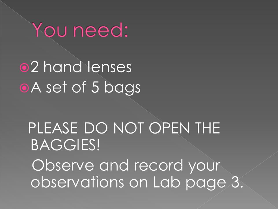 You need: 2 hand lenses A set of 5 bags