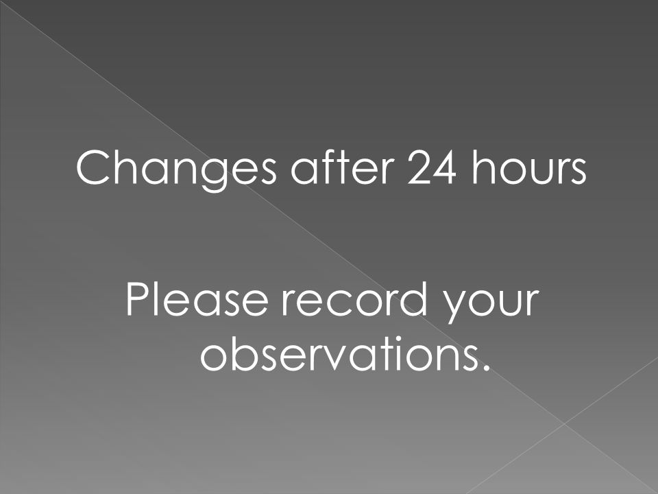 Changes after 24 hours Please record your observations.