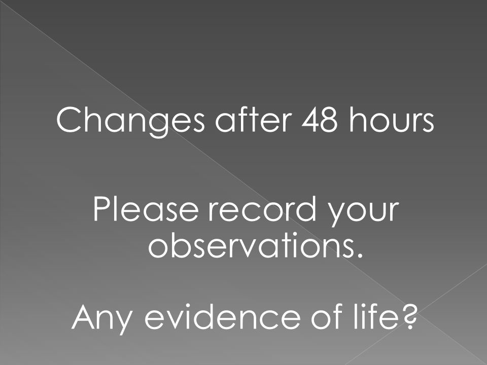 Changes after 48 hours Please record your observations
