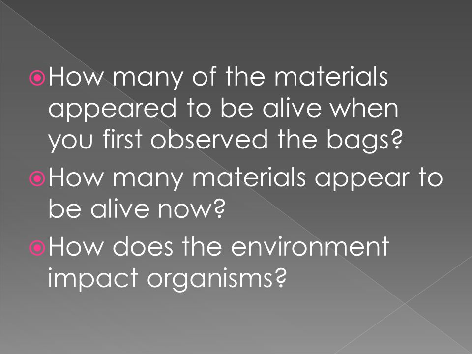 How many of the materials appeared to be alive when you first observed the bags
