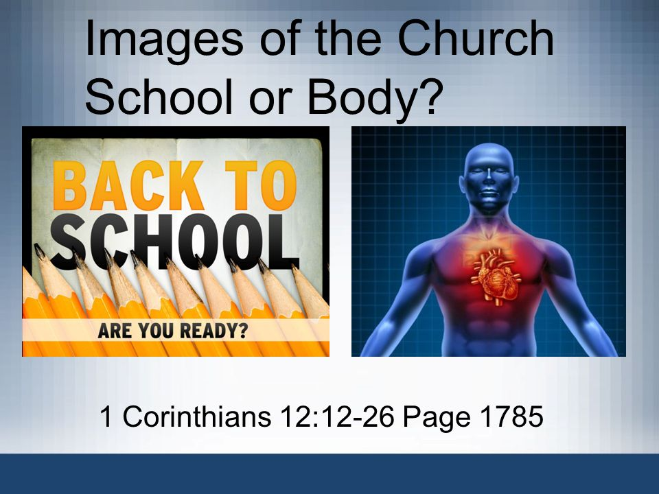 Images of the Church School or Body