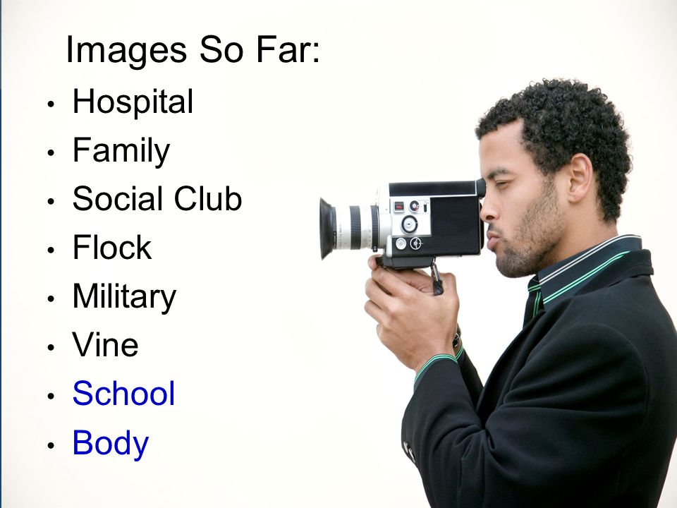 Images So Far: Hospital Family Social Club Flock Military Vine School