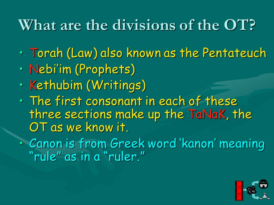 What are the divisions of the OT