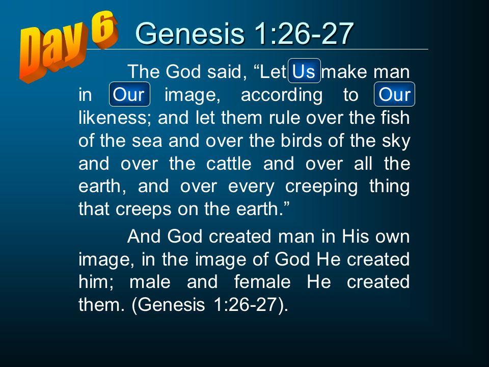 Genesis 1:26-27 Day 6.