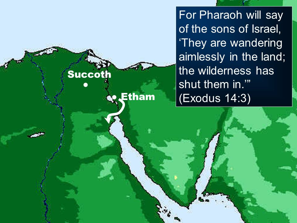 For Pharaoh will say of the sons of Israel, 'They are wandering aimlessly in the land; the wilderness has shut them in.'