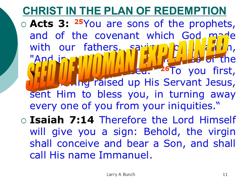 CHRIST IN THE PLAN OF REDEMPTION