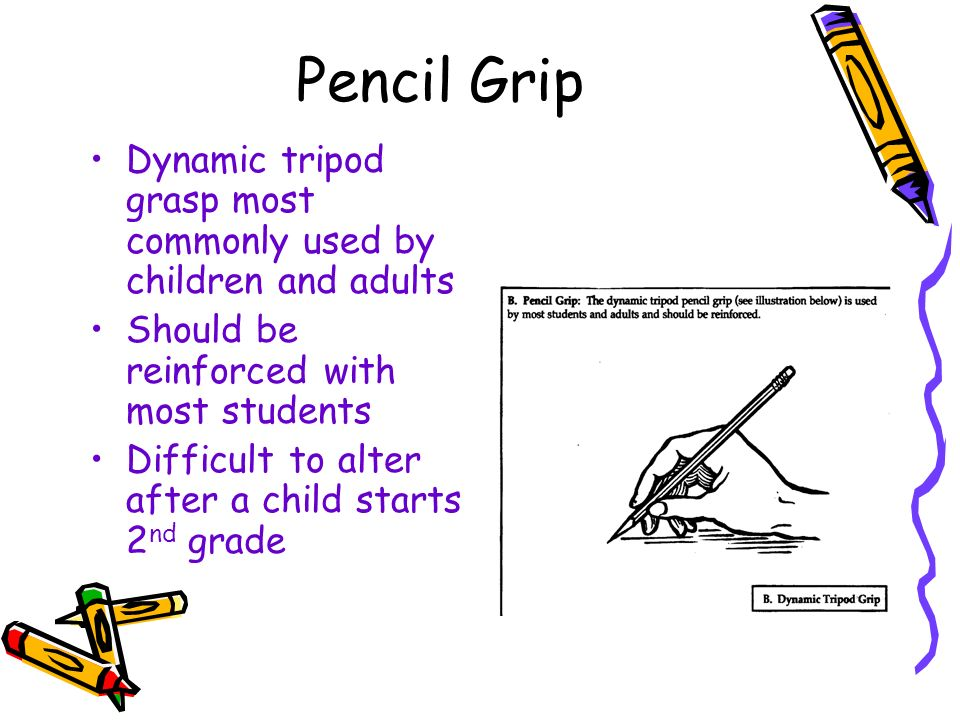 Pencil Grip Dynamic tripod grasp most commonly used by children and adults. Should be reinforced with most students.