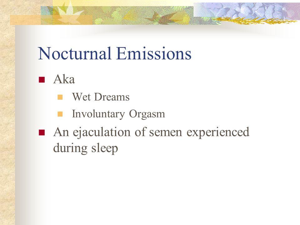 Nocturnal Emissions Aka