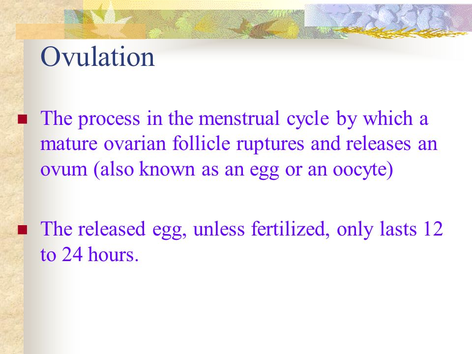 Ovulation The process in the menstrual cycle by which a mature ovarian follicle ruptures and releases an ovum (also known as an egg or an oocyte)