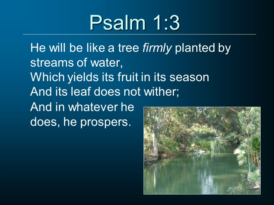 Psalm 1:3 He will be like a tree firmly planted by streams of water,